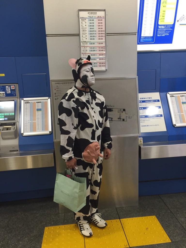 あのビッグイベントに牛が参戦