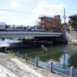 【スクープ】カッパの衝撃写真を入手! 船橋市海老川にて