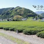 【農業大国・日本】痩せた土地の恵み(前編)