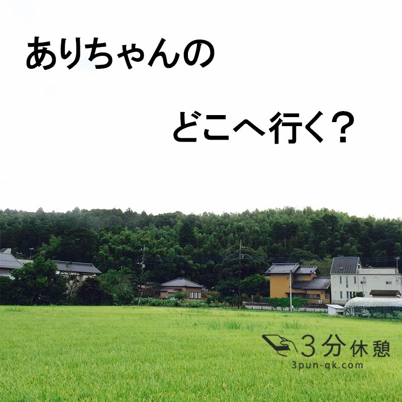 女性一人で房総料理を津田沼で食べてきた。