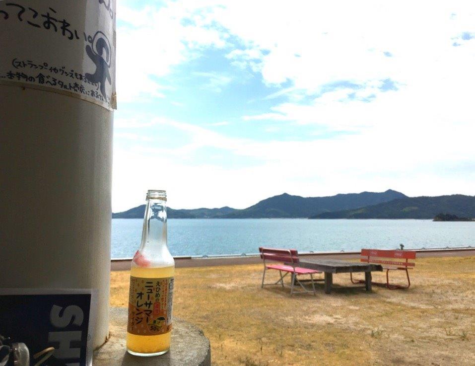 アラサー女子一人旅第2段!大三島(しまなみ海道)を徒歩と島内バスで観光してきた!